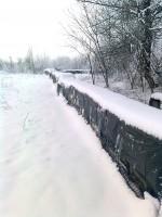 Alvó kaptárak télen